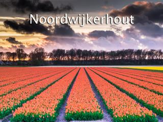 060 Noordwijkerhout