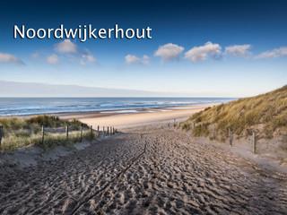 014 Noordwijkerhout