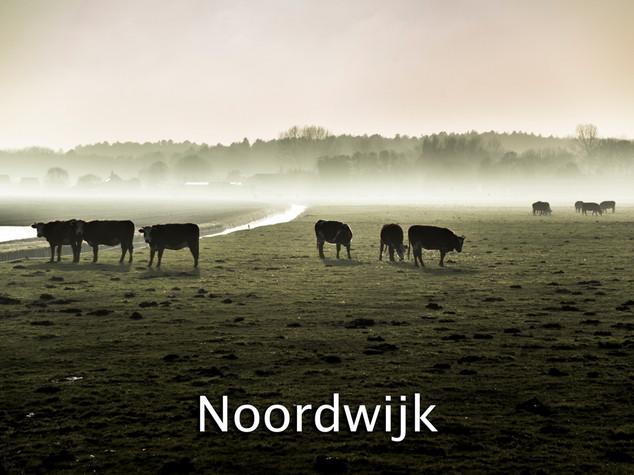 031 Noordwijk