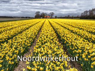 057 Noordwijkerhout