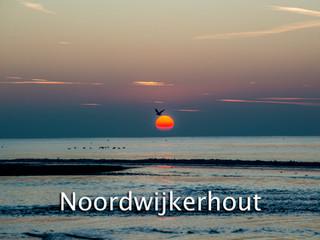 025 Noordwijkerhout