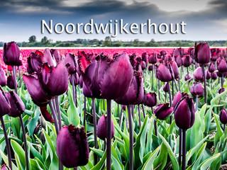 078 Noordwijkerhout