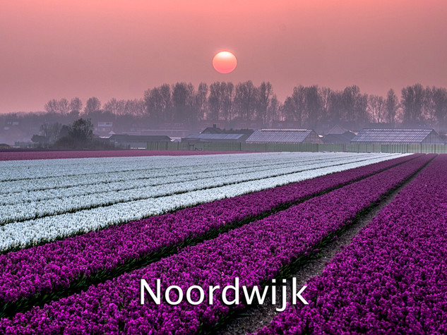 043 Noordwijk