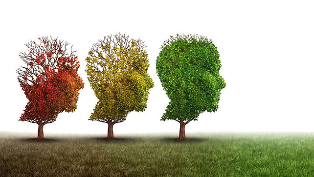 trees-head-shape-mental_health.jpg