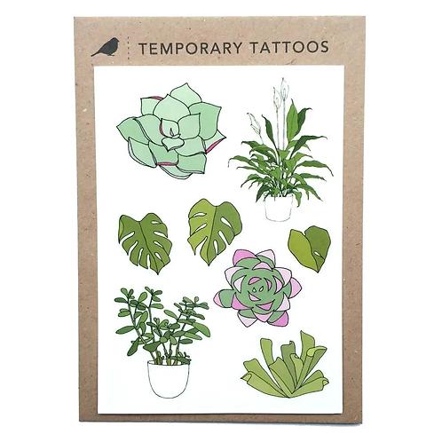 House Plant Temporary Tattoos