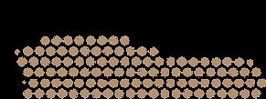 chachago branding