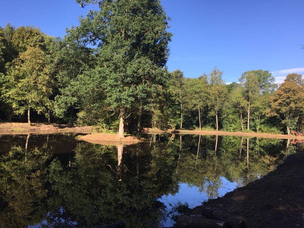aménagement extérieur - création d'un étang