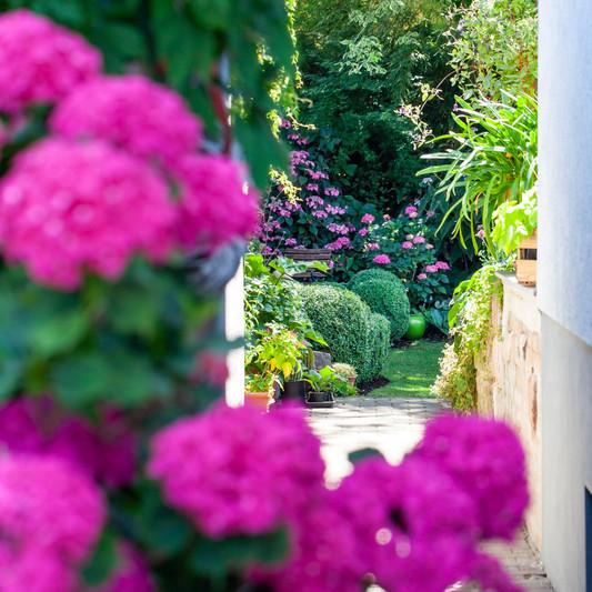 Eingang zu unserem Garten