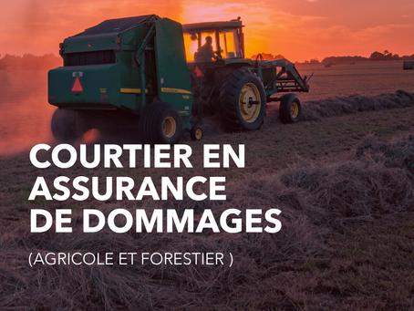 Courtier en assurance de dommages (à Saint-Hyacinthe)