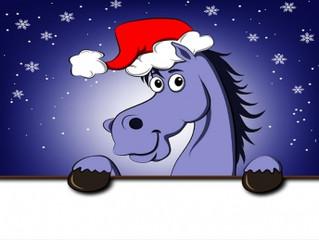 АКЦИЯ: «Новогодние каникулы в реабилитационном центре клиники «MAXIMA VET»!