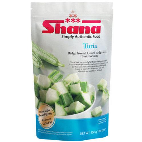 Shana Turia