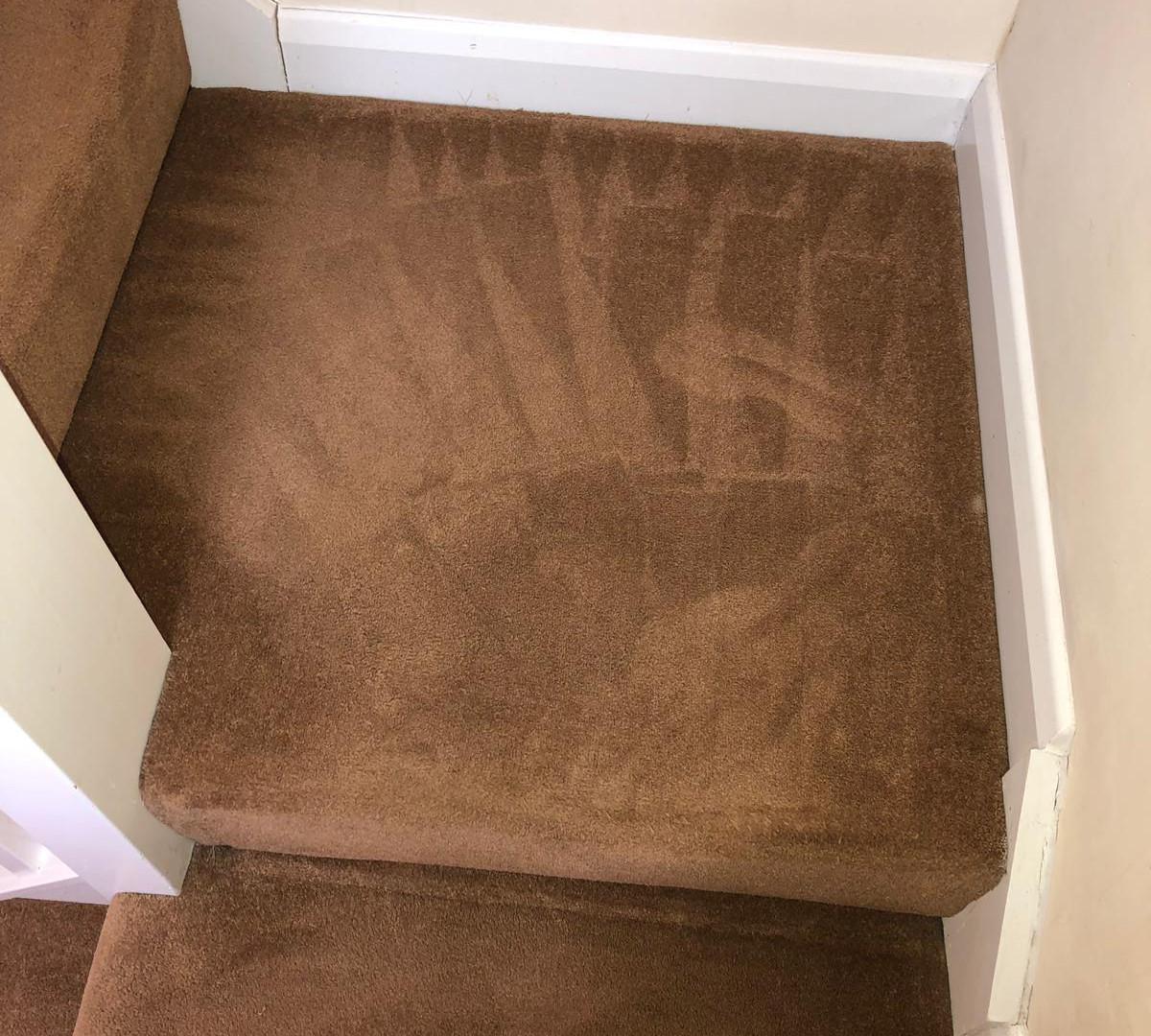 Carpet Cleaning Aylesbury