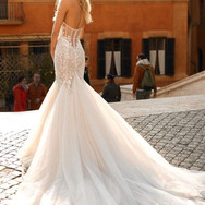 Lace and Tulle Mermaid Back