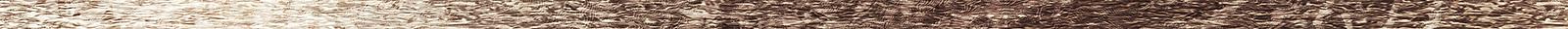 wood-line.png