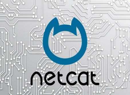Netcat Relay
