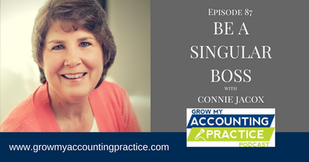 Be A Singular Boss with Mike Michalowicz, Ron Saharyan, and Connie Jacox