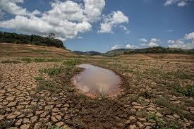 Economia ambiental e conservação de ecossistemas