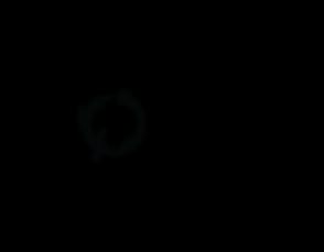 Logo_Black-08.png