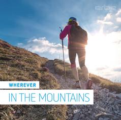 27_Erbe_Social-Media_EN_Story-mountains_1200x1200px_1.jpg