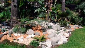La rocalla: alternativa para tu jardín