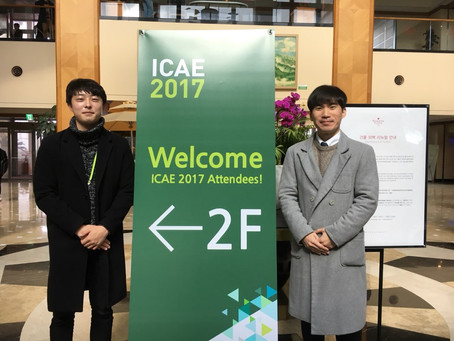 2017 The 4th International Conference on Advanced Electromaterials (ICAE 2017)