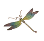 dragonfly_logo_color_2018__2_-removebg-p