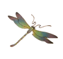 dragonfly_logo_color_2018__flipped-remov