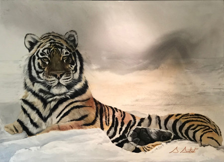tigre de Sibérie.jpeg