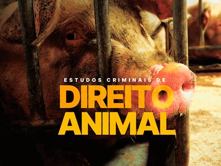 MAUS TRATOS ANIMAIS: A TÊNUE RELAÇÃO COM A VIOLÊNCIA DOMÉSTICA