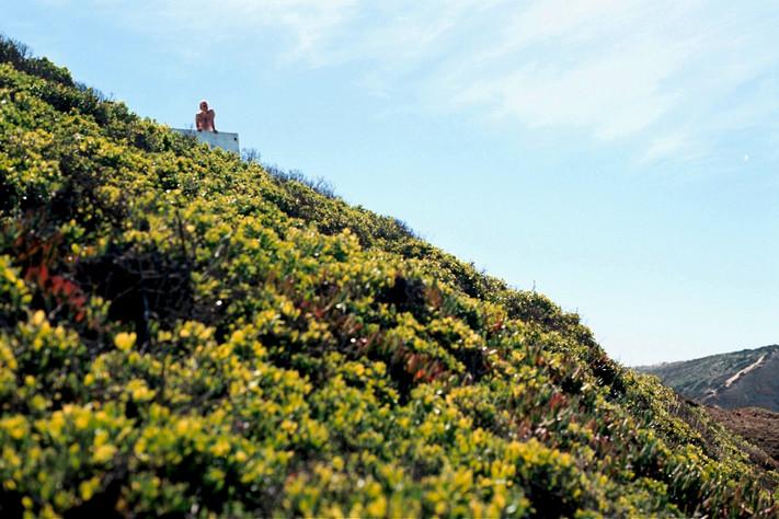 top shelf. Ericeira, Portugal..jpg