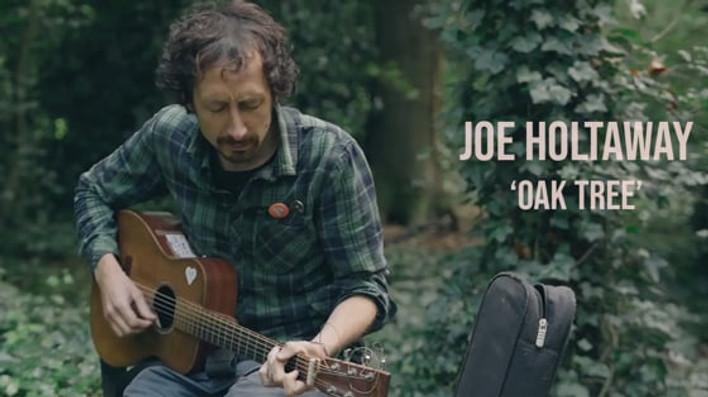 Joe Holtaway - Oak Tree