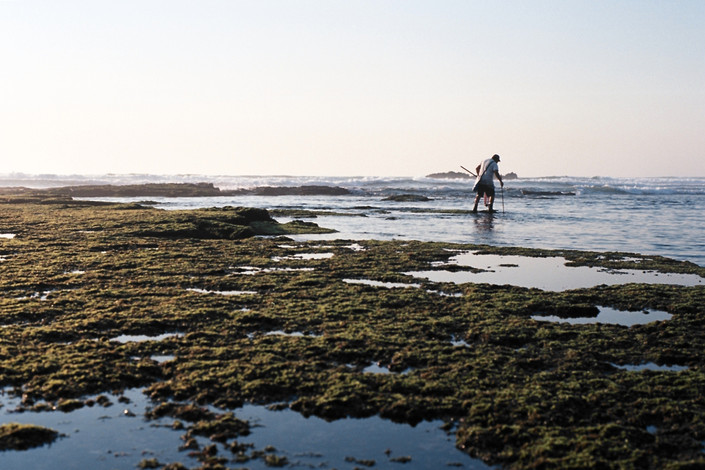 shell fishing, Ericeira, Portugal..jpg