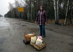 ChernobylQV15