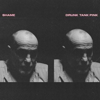 Drunk Tank Pink - shame