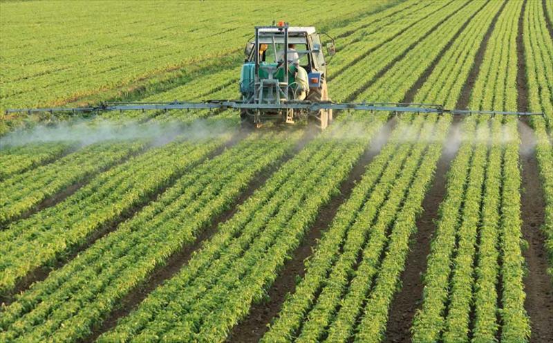 pesticidas.jpg