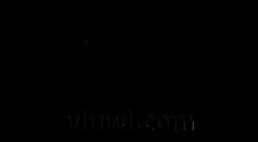 viuwi-final2017.png