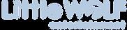 LWE Logo PNG B7CBE1.png