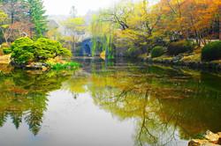 慶州 仏国寺の秋