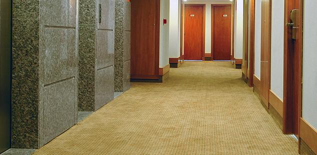 Carpete Hall Elevador