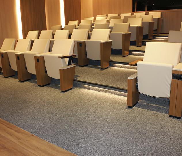 Carpetes para Auditórios