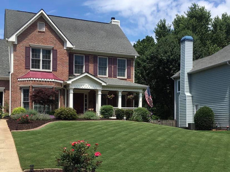 Yard of the Month - June 2020