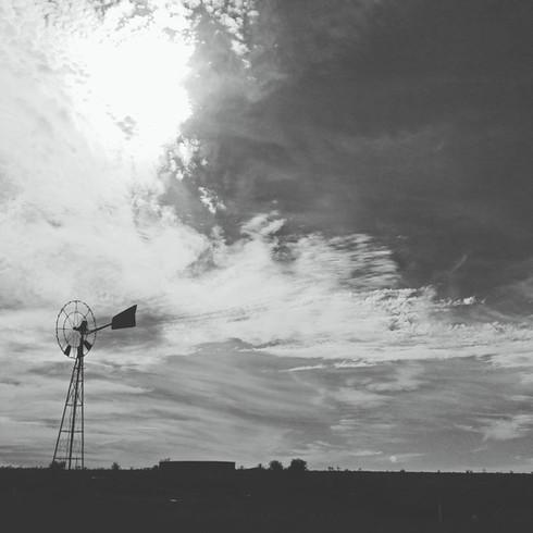 Nils Cusack - No Signal/Signal Lost