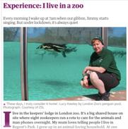 Weekend, The Guardian