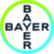 Bayer-Cross_Basic_print_CMYK.jpg
