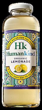 Lemonade (12-pack)
