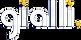 Gialli-Logo-3D.png