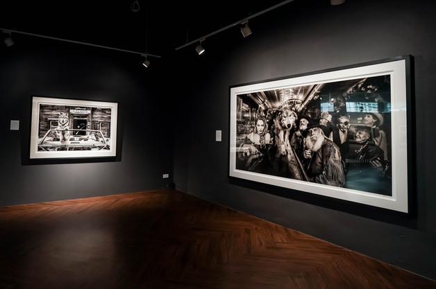 Miaja Art Collections13.03.2019_AxelSeri