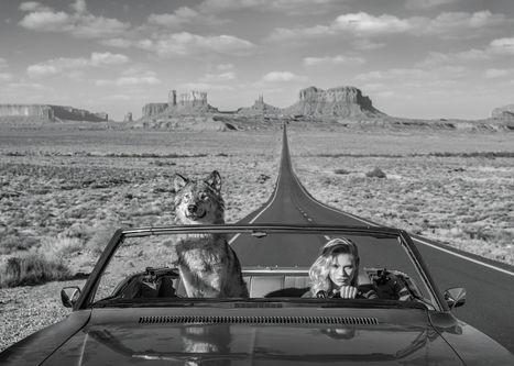 Road Trip II – Utah, USA