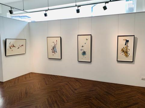 Exhibition Nissa Focus Shot.jpg