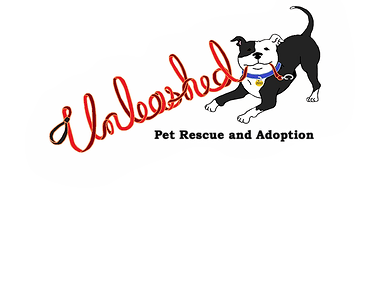 Unleashed Pet Rescue and Adoption